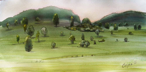 Field by selma-todorova