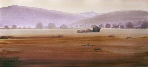 Field 3 by selma-todorova