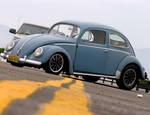 Oval bug 2