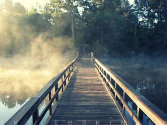 Foggy Bridge by skylerskinner
