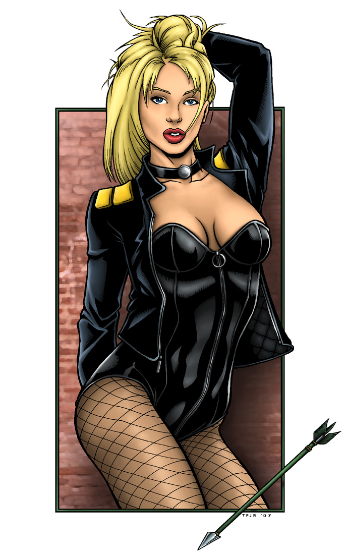 Black canary erotic — img 4