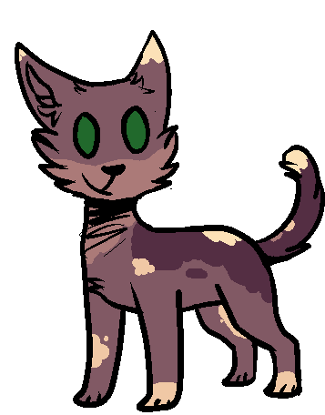 How To Make A Good Warrior Cat Name