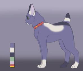 Blue Calico Adopt! Open