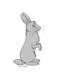 Bunny Base - F2U