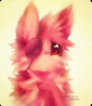 FNAF | Foxy