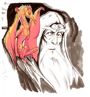 A Wizard and a Wyverling by AmericanGinseng