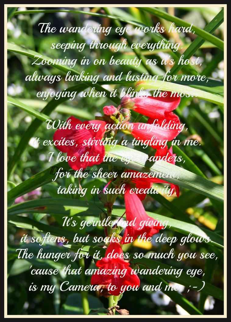 Poem - Wandering Eye by Deviantinterested