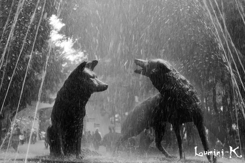 Fuente de los Coyotes by JoshTox