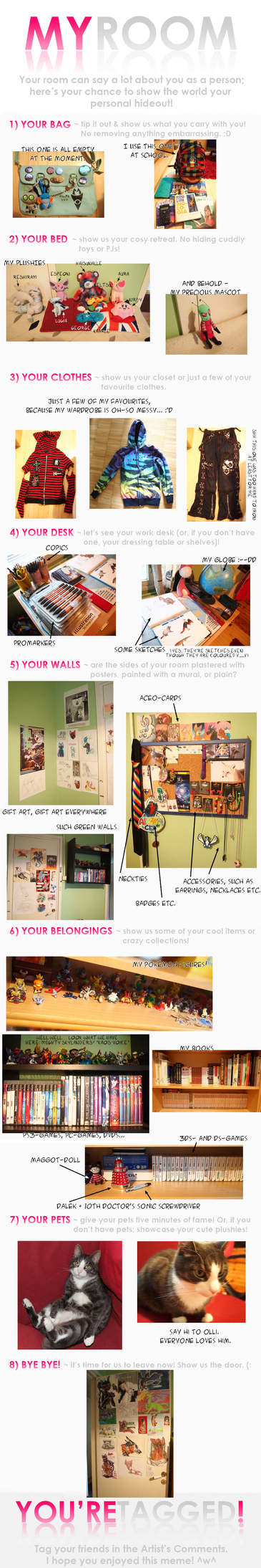 My Room : Meme by AikenLugiA