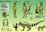 Lizard Stone - reference sheet