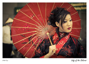 Lady of the Sakuras