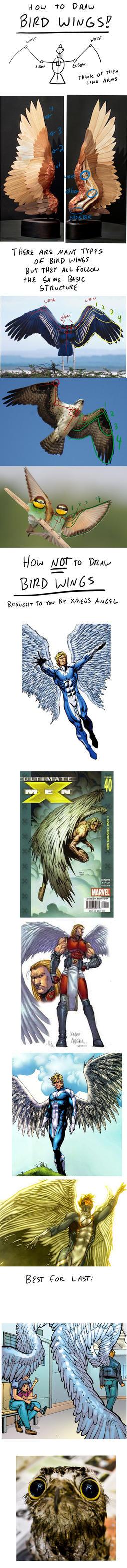Bad Art - Bird Wings by RomanJones