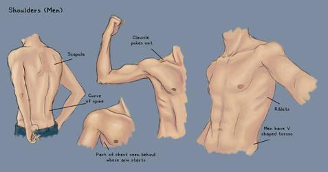 Shoulder Study - Men by KinderCollective
