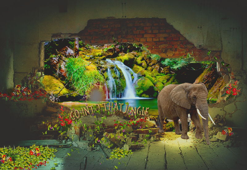 Galerie d'un escargot tout rose  Into_the_jungle_by_misatographisme-d95vexm