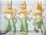 Raily reference sheet