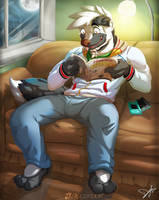 A good book by Dragendorf
