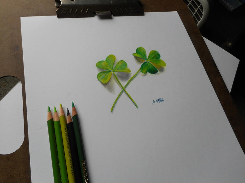 clover drawing by eddyfying