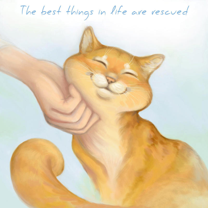Best things in life are rescued... by Yullapa