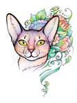 Abyssinian Cat portrait by Yullapa