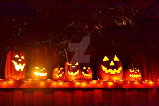 Pumpkin Glow In The Night