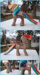 Rainbow Dash Woodwork IV