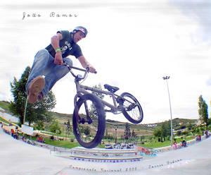 Ramos Whip