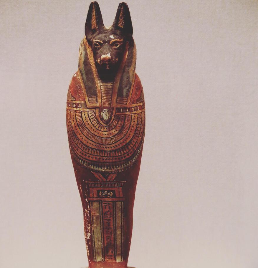 Anubis by weathervane