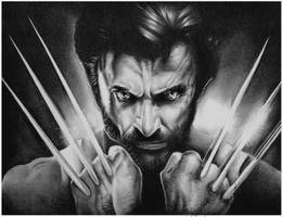 Wolverine by shonechacko
