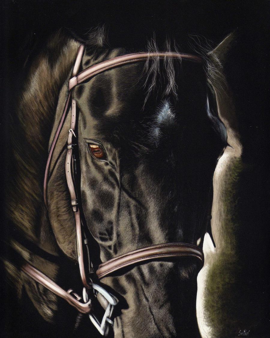 Dark Beauty by shonechacko