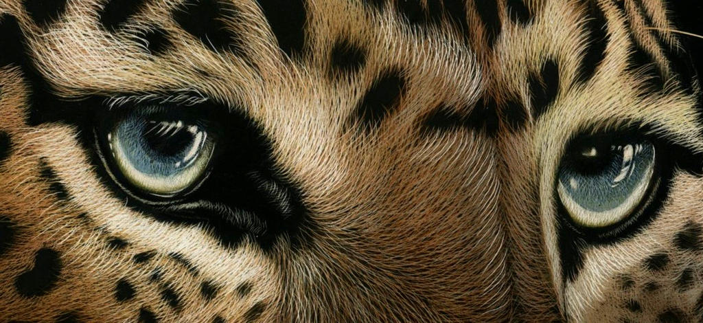 WIP - Eyes closeup