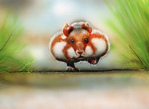 Chubby Cheeks [Inks on clayboard]