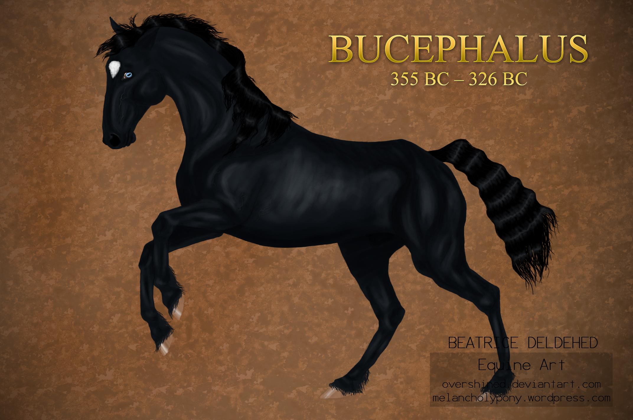 Bucephalus the Great by overshined on DeviantArt