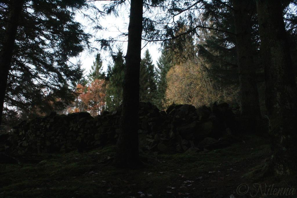 ~ Autumn harmony ~ by Nilenna