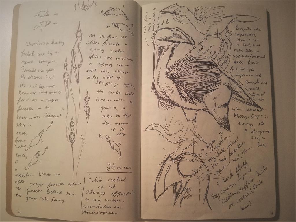 Dec-Feb 2017 Sketchbook 6-7 by Bazzyli
