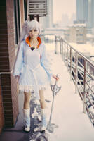 Weiss 5 by ClaudiaQH