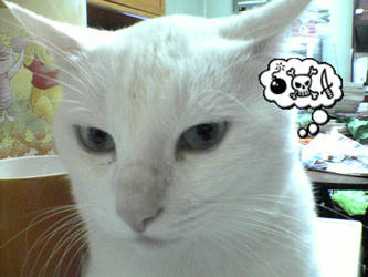 i am thinking by catcatmycat