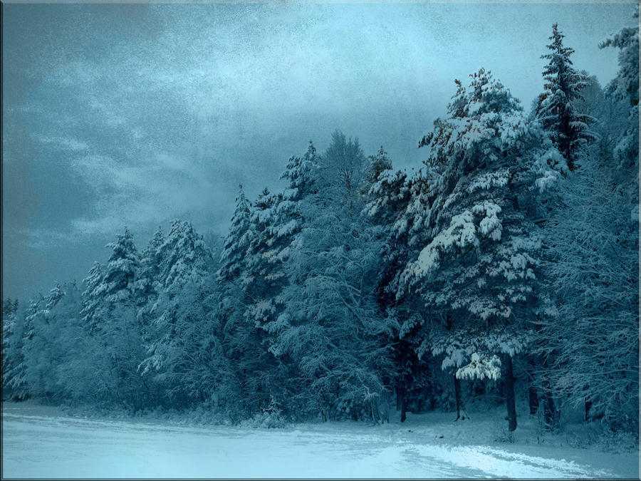 Still winter... by gin-sui