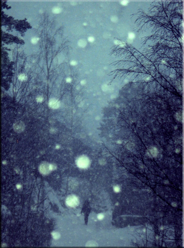 ::Snow:: by gin-sui