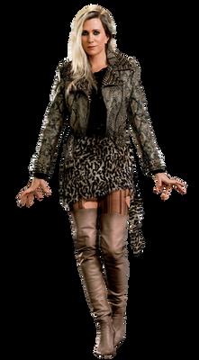 Wonder Woman 1984 Minerva Cheetah PNG