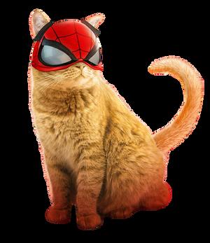Spider-Man Spider-Cat PNG