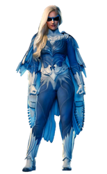 Titans Season 2 Dawn Granger Dove PNG