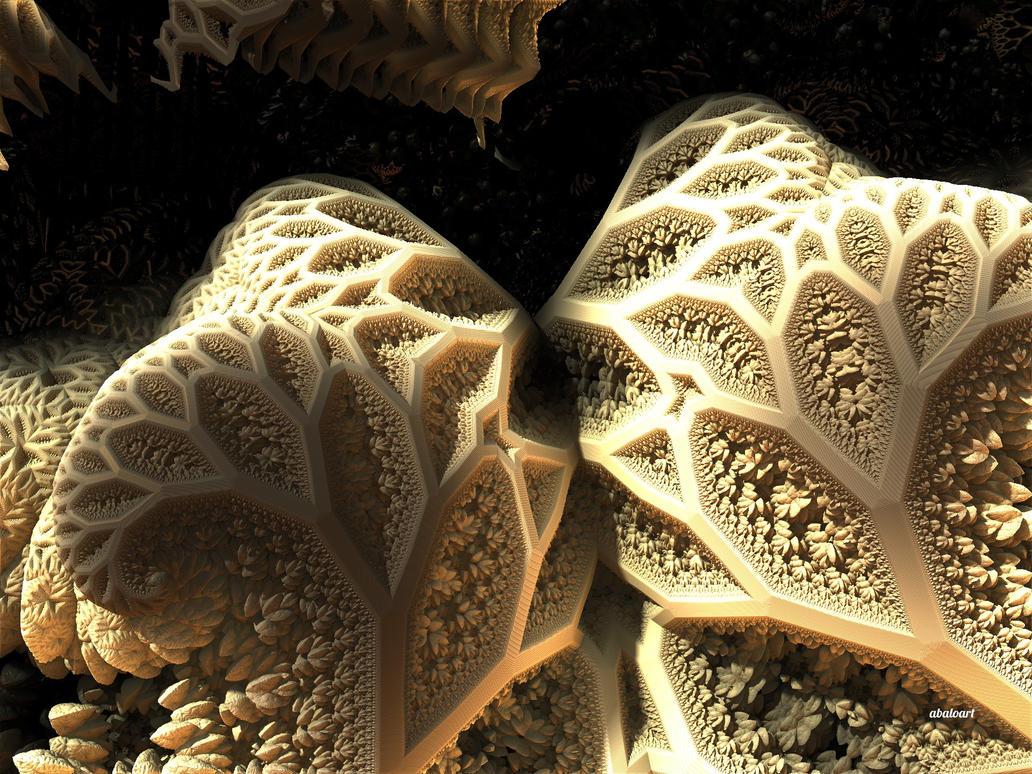 Illuminated Coral Caves by batjorge