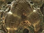 Goldenweb ASurf-Pong 137