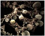 Pearls by batjorge