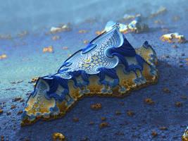 Blue Kingdom by batjorge