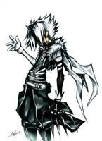 Sacred Jester by CaymArtworks