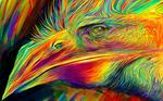 Colorful Flight - (Work in progress)