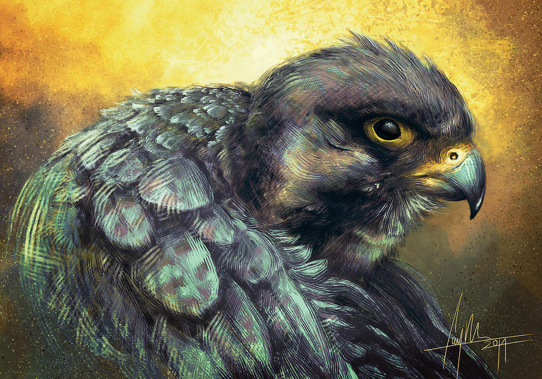 Falcon by CaymArtworks