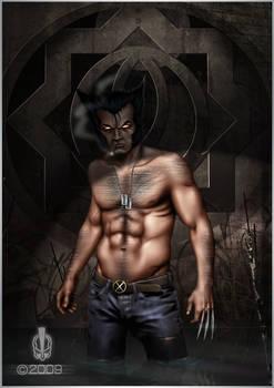 Wolverine: Got a problem?