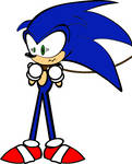 Sonic Leashed?